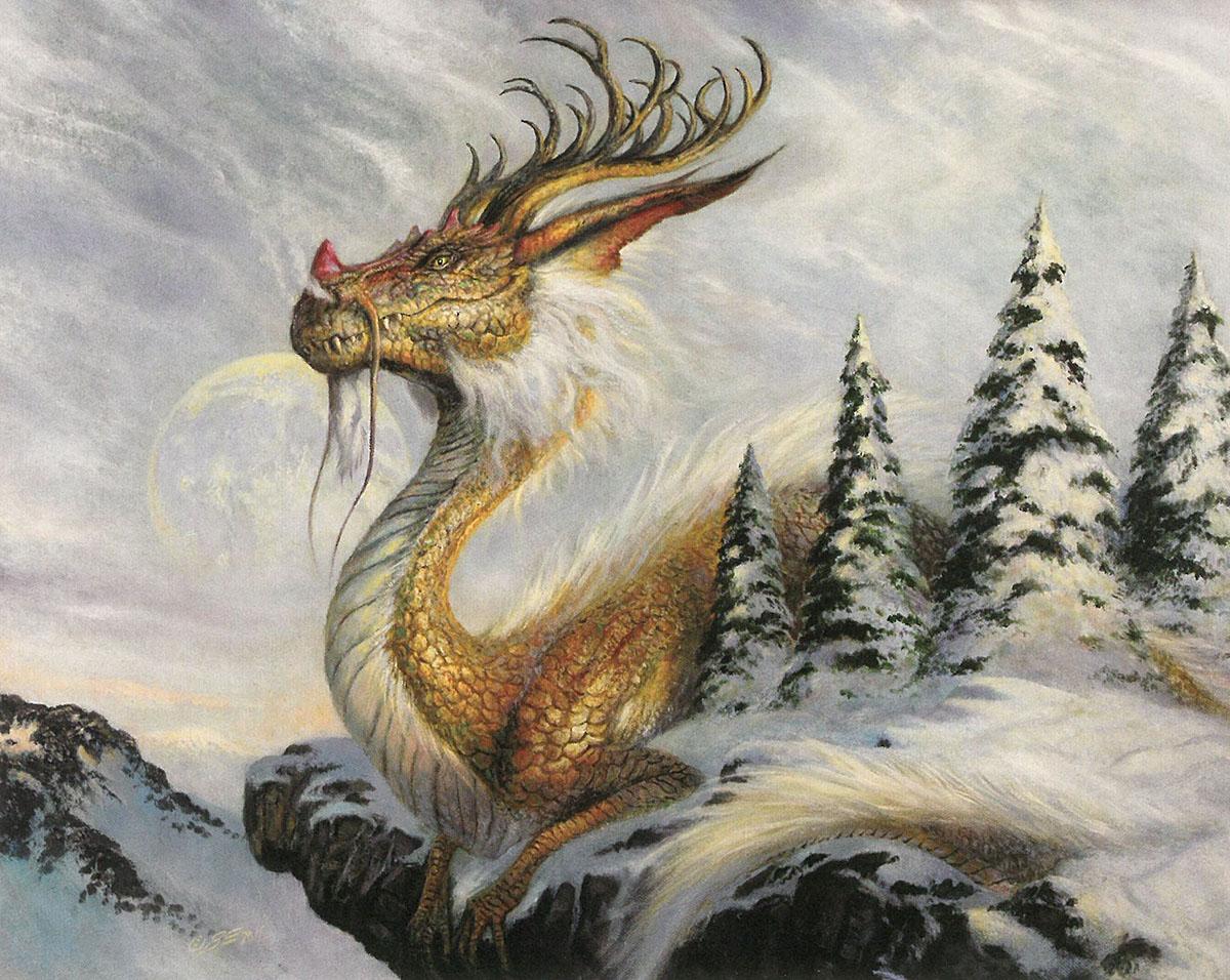 Winter's Reign